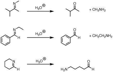 Hydrolysis of imines to give ketones (or aldehydes) – Master