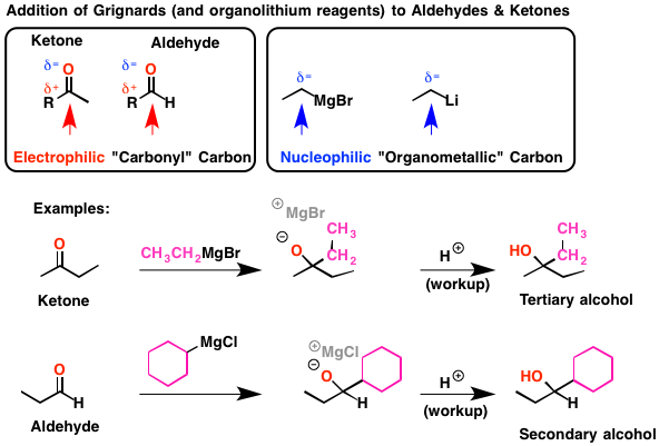 Reactions of Grignard Reagents – Master Organic Chemistry