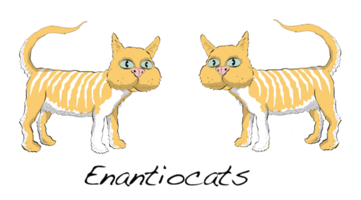 drawing-of-enantiocats-master-organic-chemistry-graeme-mackay-look-at-the-legs