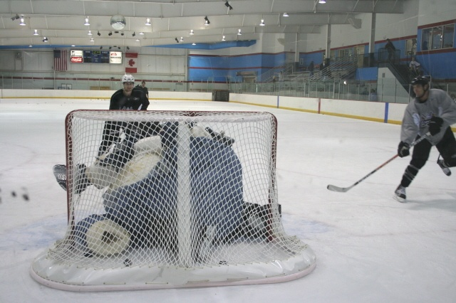 picture-of-hockey-goalie-in-a-fat-suit-as-analogy-for-nucleophilic-attack-on-a-bulky-electrophile-todd-gallagher