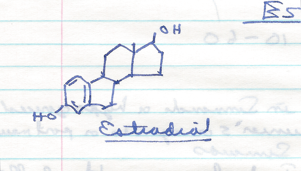 hand-drawing-of-estradiol.