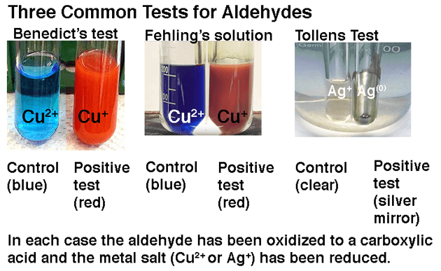 benedicts-test-fehlings-solution-and-tollens-tests-for-presence-of-aldehydes-reducing-sugars