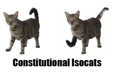 constitutional-isocats