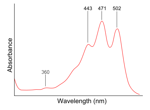 uv vis spectrum of lycopene and chlorophyll have multiple absorption maxima not as easy to determine color wikipedia image