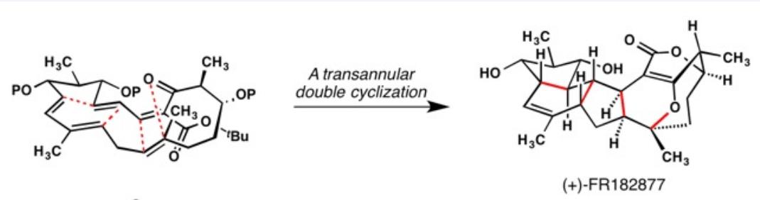 double-intramolecular-diels-alder-reaction-forming-FR182877-Sorensen